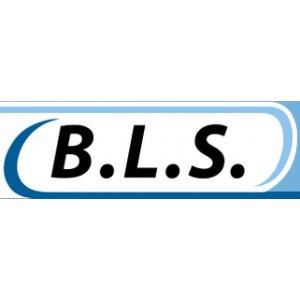 Bosse Logistic Services (B.L.S.)